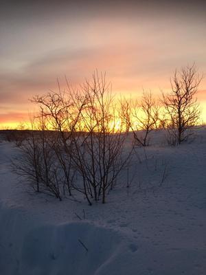 Noorwegen Arctic reis